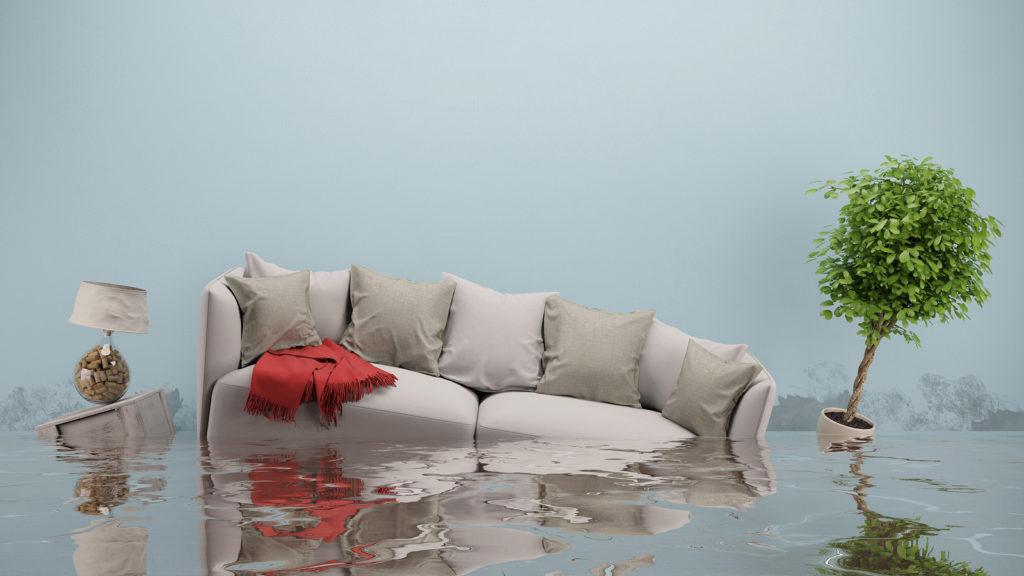 Flood-Indoor